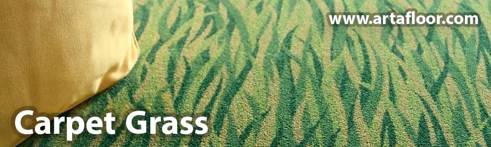 Arta Carpet Grass